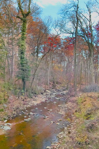 This fall view is looking upstream from the Old Chesterbrook Road Trailhead.