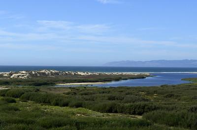Guadalupe Dunes Preserve, CA