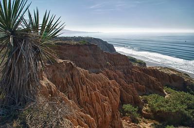 Torrey Pines, La Jolla, California