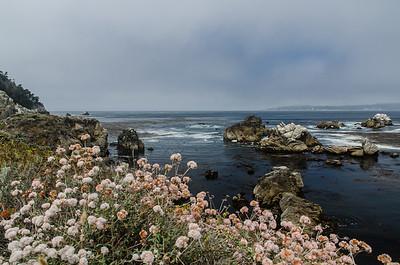 Along the coast of Carmel Highlands, CA