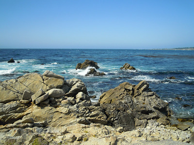 Along the 17 mile Drive in Monterey, CA.
