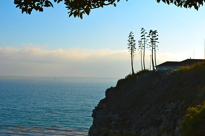 Point Fermin Park, Palos Verdes Peninsula, CA