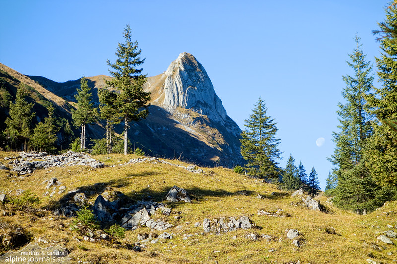 Torkopf and the Moon