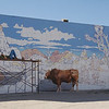"Twenty-Nine Palms has this amazing ""real"" mural"