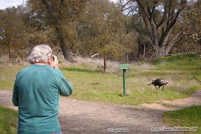 Wild Turkey and Dad