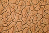Clay mud texture peels back in the heat along the dry river bed of Harris Wash in Escalante Canyon area.