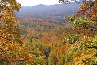 Fall foliage in North Georgia