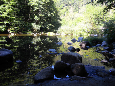 Reflecting pond in Redwood forest, Santa Cruz, CA