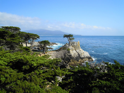 The Lone Cypress, Monterey, CA