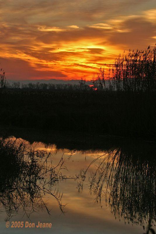 January 15, 2005 sunrise.
