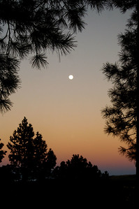 Moon rise above our cabin in Ruidoso, NM.  Simply Beautiful.