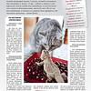 Amber_Cat_Magazin-005