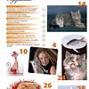 Amber_Cat_Magazin-003