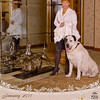 Amber_Dog-Cat_2011-002