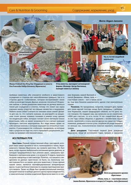 Amber_Cat_Magazin-045