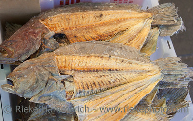 Dried Fish for Sale used in Traditional Chinese Medicine – Street Market in Chinatown, Vancouver, British Columbia, Canada