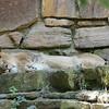 2010, 05-27 Zoo (211)