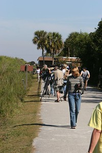 Shark Valley west trail behind main entrance.  The best shooting is in the first 300ft. of the trail.  Located about 20 miles west of the Florida Turnpike on Tamiami Trail (SW 8th Street).  Everglades National Park (entrance fee).  Opens at 8:30, get there early for parking.  Best December thru March.