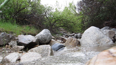 S95 video capture, the camera sitting on a rock in the stream.