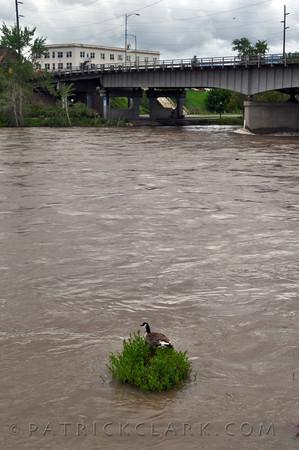 private refuge, flood stage,Missoula,Montana