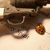 holy spirit, gun, ladybug