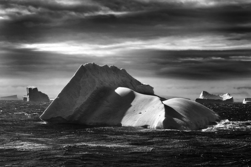 Monotone Iceberg at Gerlache Strait (iceberg alley), Antarctica.