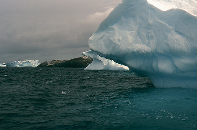 Antarctic Icebergs at the Yalour Islands