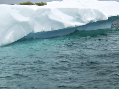 Midday nap in Antarctica