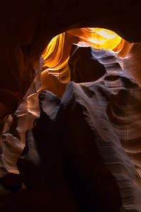 Upper Antelope Canyon Animal