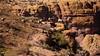 Apache Trail 20 (Desert bighorn sheep herd)