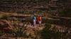 Apache Trail 10 (Viv, Sue & Tiko on old FR213 Rd)-3