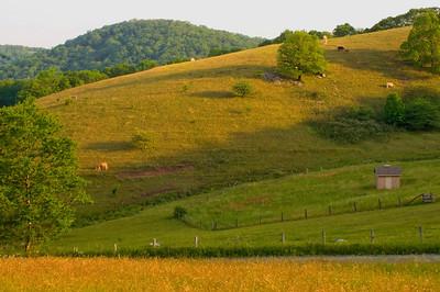 Mountain Pasture - Blue Ridge Parkway