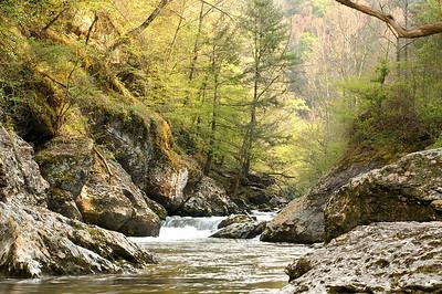 Mountain Creek - Great Smoky Mountain Park