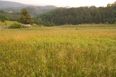 Pasture - Blue Ridge Parkwy