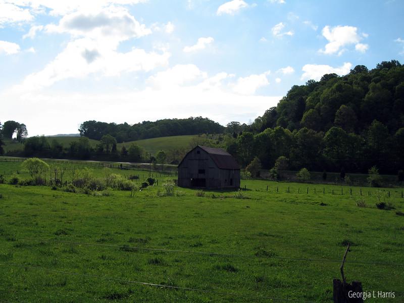 Fields after Laurel Creek Shelter