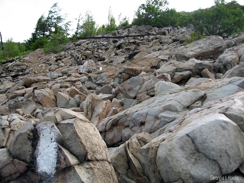 Trail at Lehigh Gap