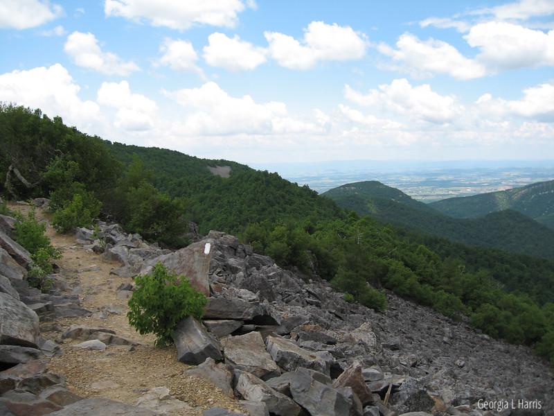 Blackrock: CCC Trail in Shenandoahs