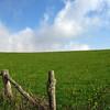 Farm after TN 91