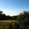 VT Meadow