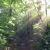 mi 1019, Appalachian Trail