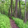 Nr Ribble Trail
