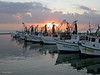 Sunrise, Fulton Harbor, 11/15/2003.