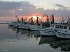 Sunrise, Fulton Harbor, 11/15/2003.