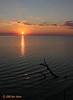 Sunrise, Dagger Point, Aransas NWR, 10/09/10.