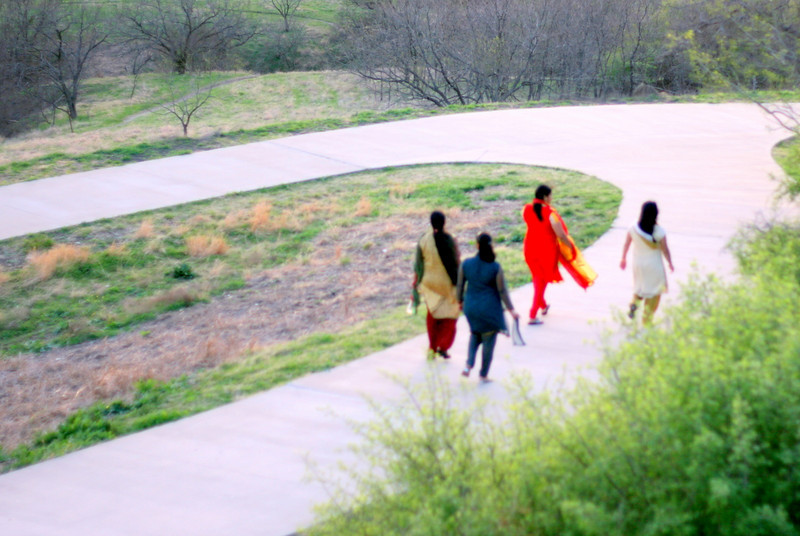 An assortment of traditionally-dressed ladies were enjoying the park.