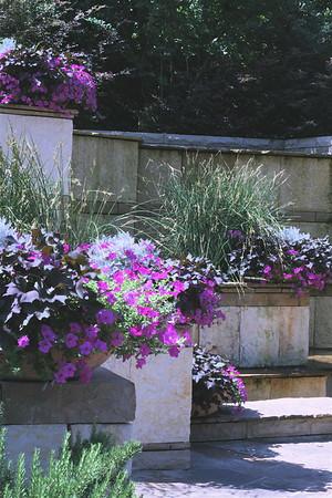 Arboretum Summer 2008