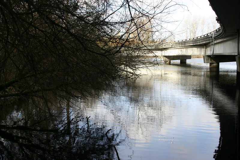 Unseen by the traffic, a waterside trail passes under the freeway connecting the arboretum with Marsh Island