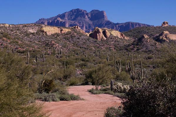 Arizona 2-15