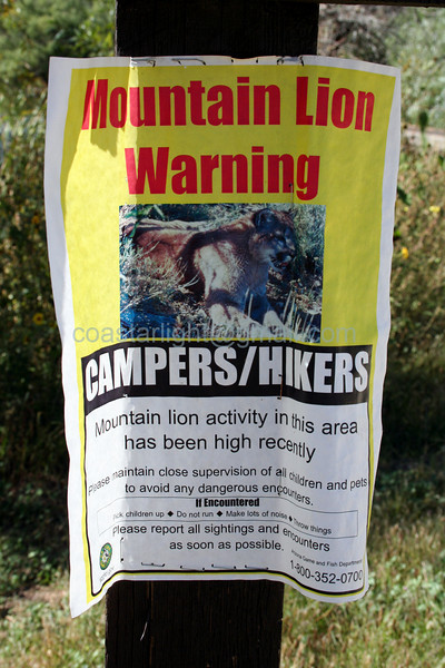 Mountain Lion Warning - Granite Mountain, Prescott, AZ - 9/06
