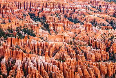 Bryce Canyon Hoodoos at Dusk